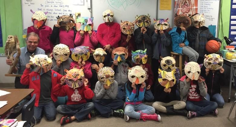 owl masks