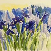 WG.Iris by Patty Yates